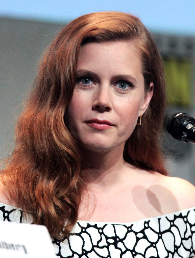Amy Adams Makeup Photos