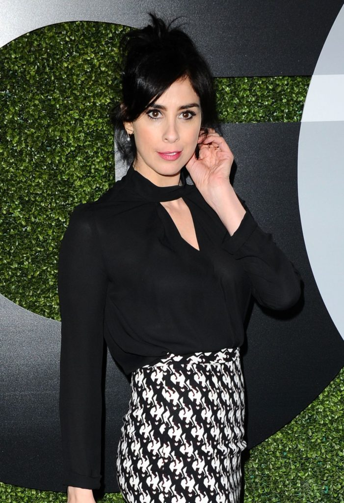 Sarah Silverman Hair Style Pictures