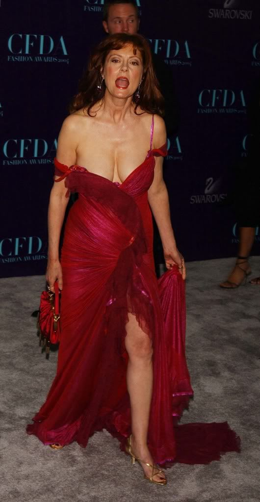 Susan Sarandon Undergarments Pictures