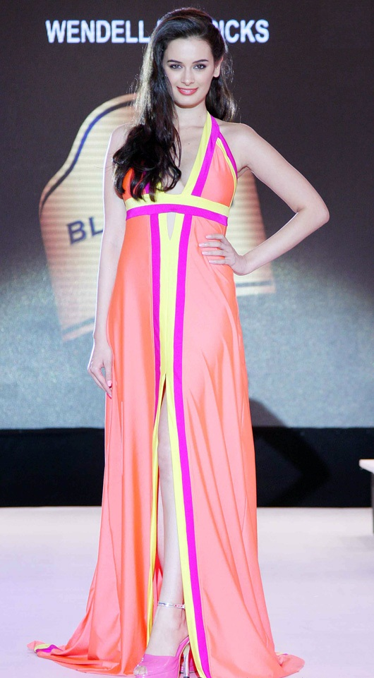 Evelyn Sharma Pictures